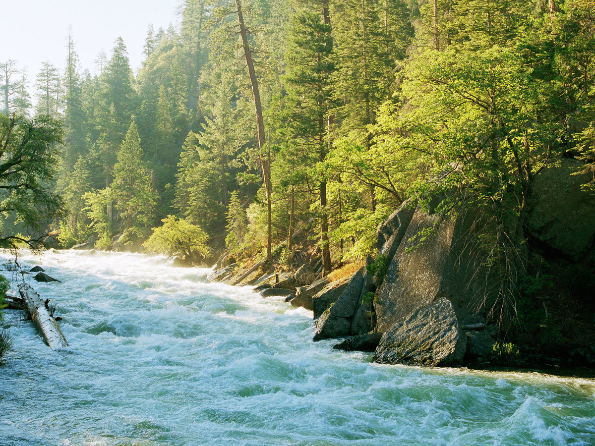 Sequoia and Kings Canyon Trip Itineraries