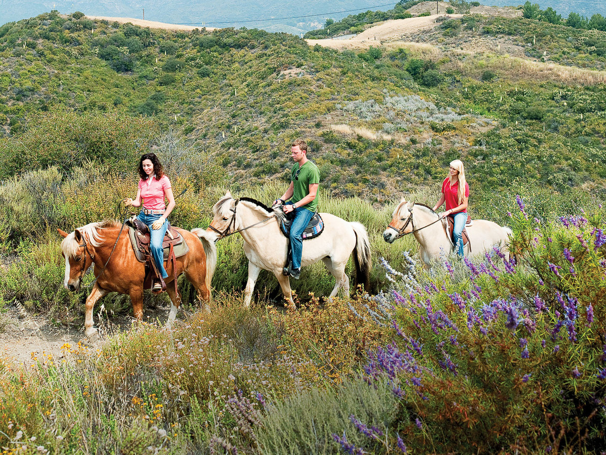 Malibu, CA horseback riding