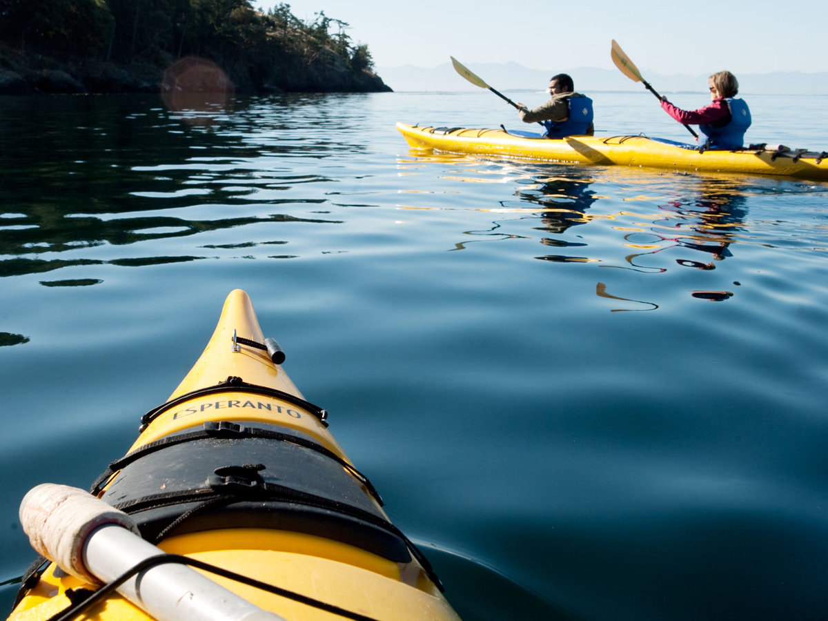 Kayak the San Juan ISlands