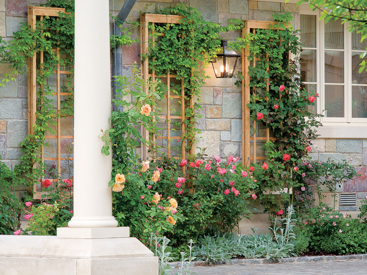 How To Build A Garden Trellis For A Wall Sunset Magazine