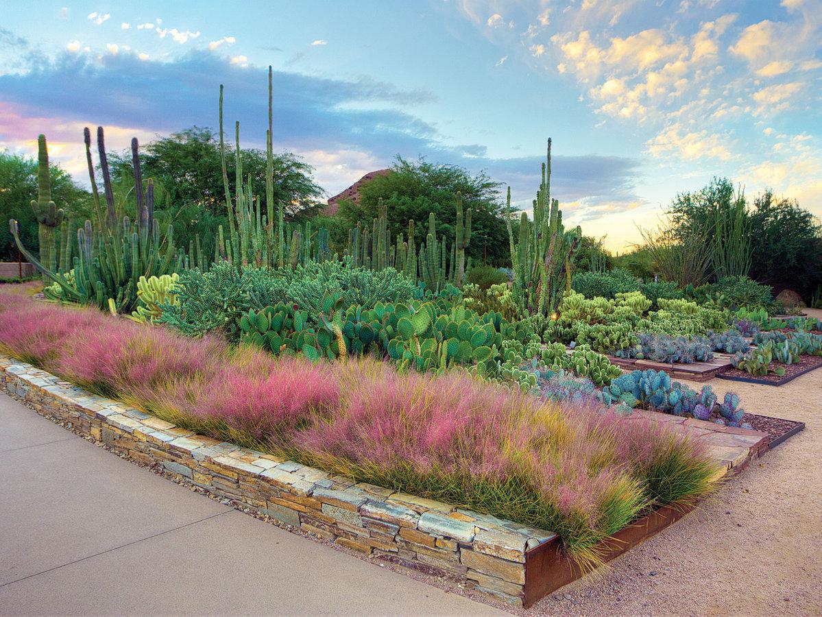 Top 12 Public Gardens - Sunset Magazine