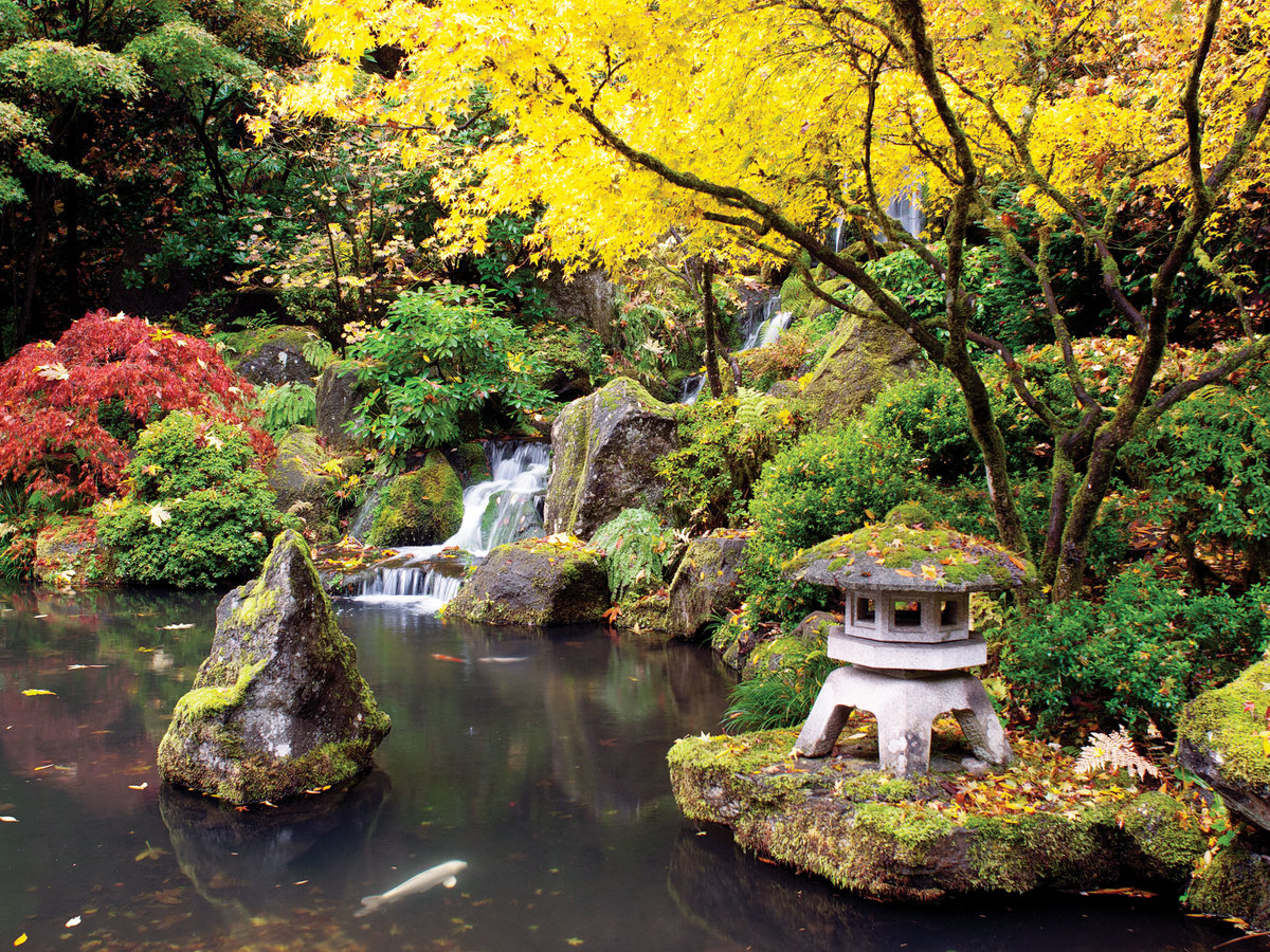 Portland local 39 s guide sunset magazine for Portland japanese garden admission