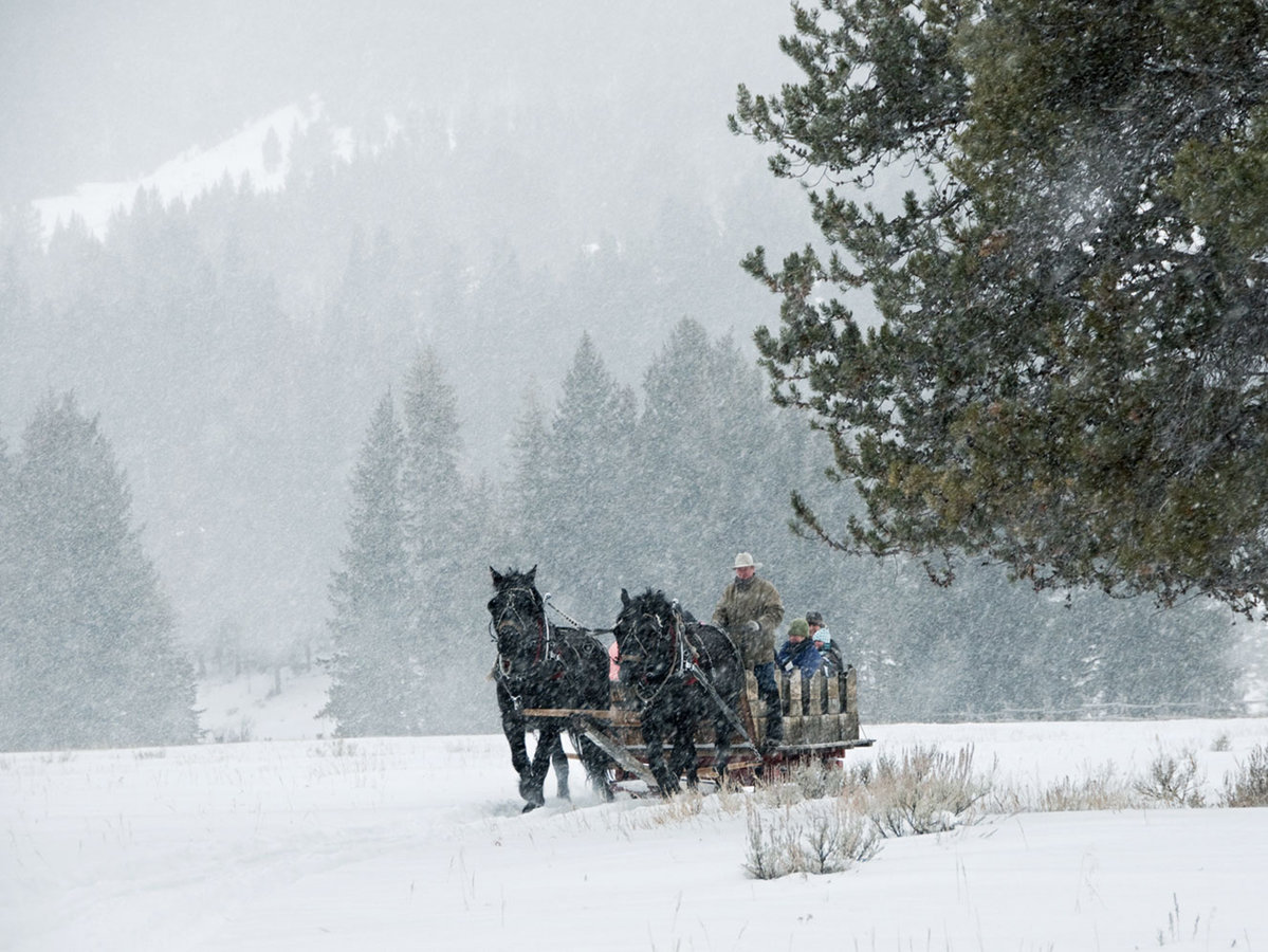 A wrangler-guided sleigh ride in Big Sky, Montana