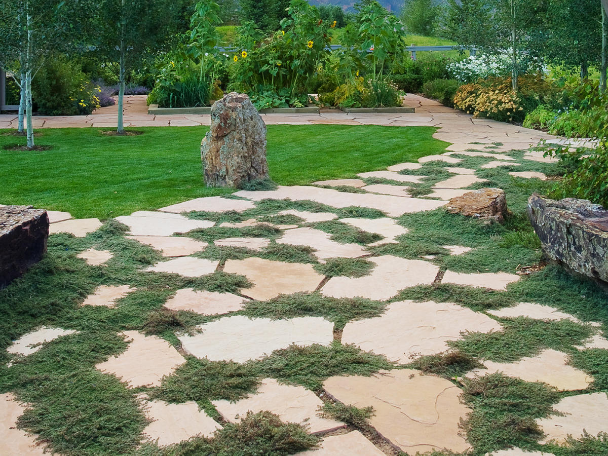 Great Garden Paths