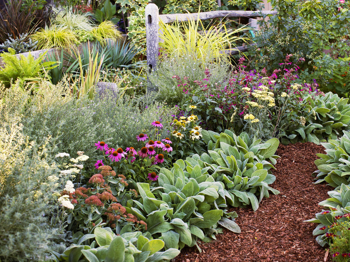 4 Easy-Care Flower Bed Ideas - Sunset Magazine on Flower Bed Ideas Backyard id=28982