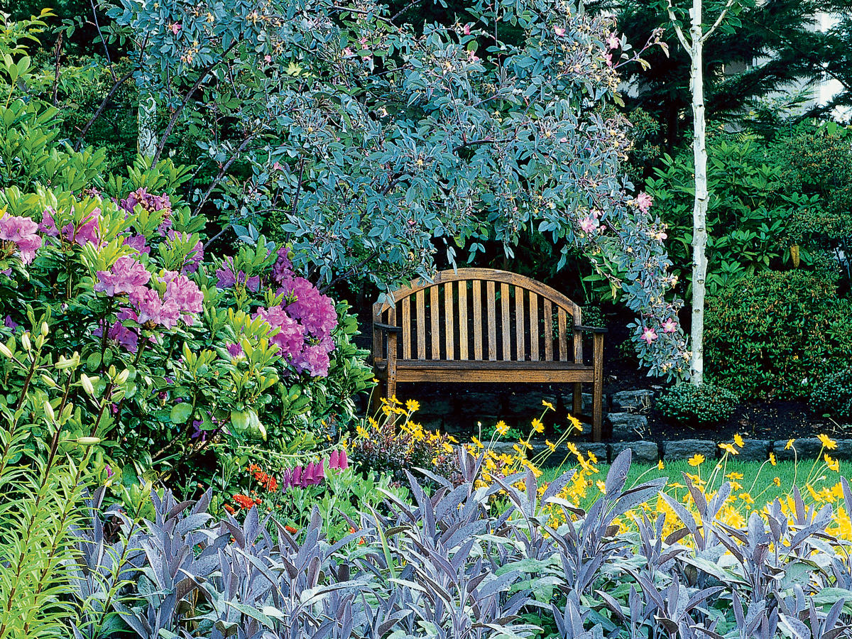 Marvelous How To Grow A Cottage Garden Sunset Magazine Download Free Architecture Designs Viewormadebymaigaardcom