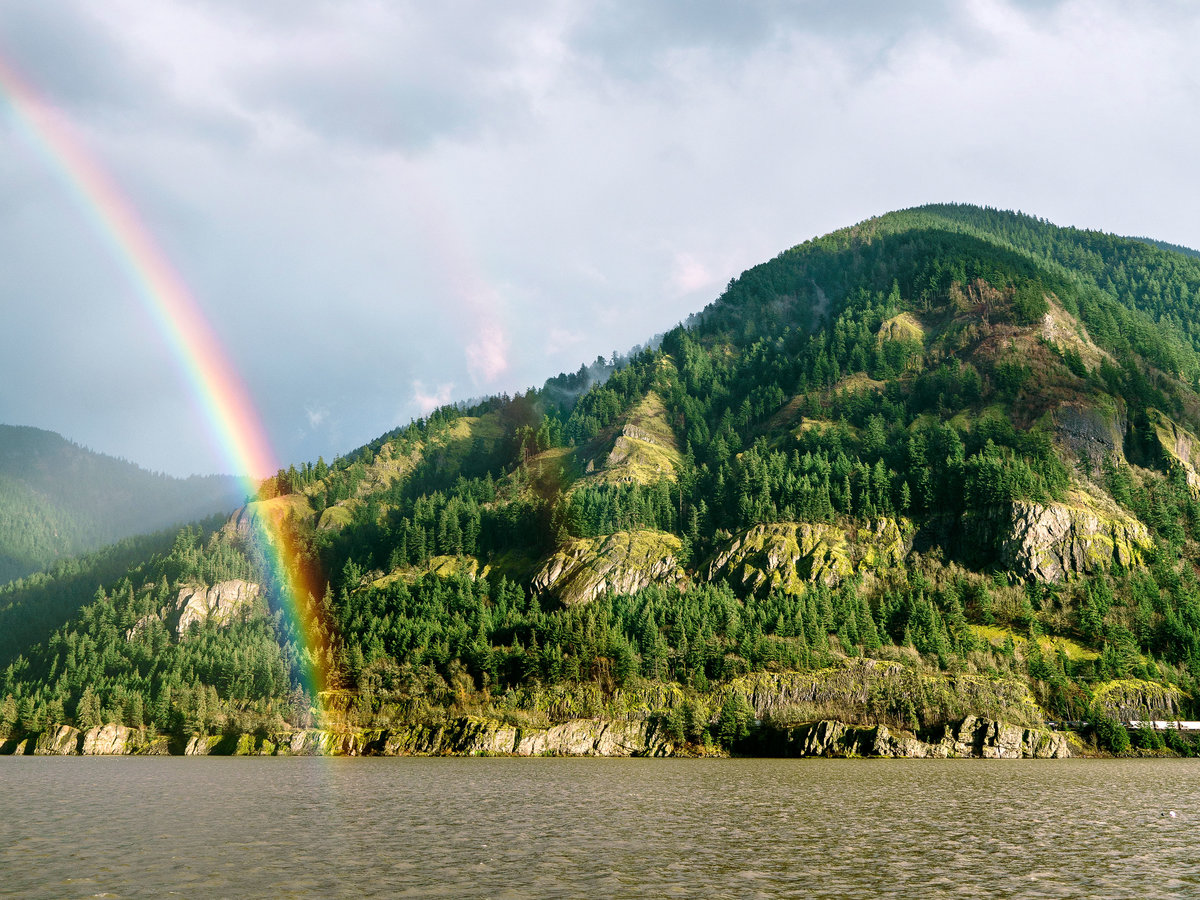 Columbia River Rainbow
