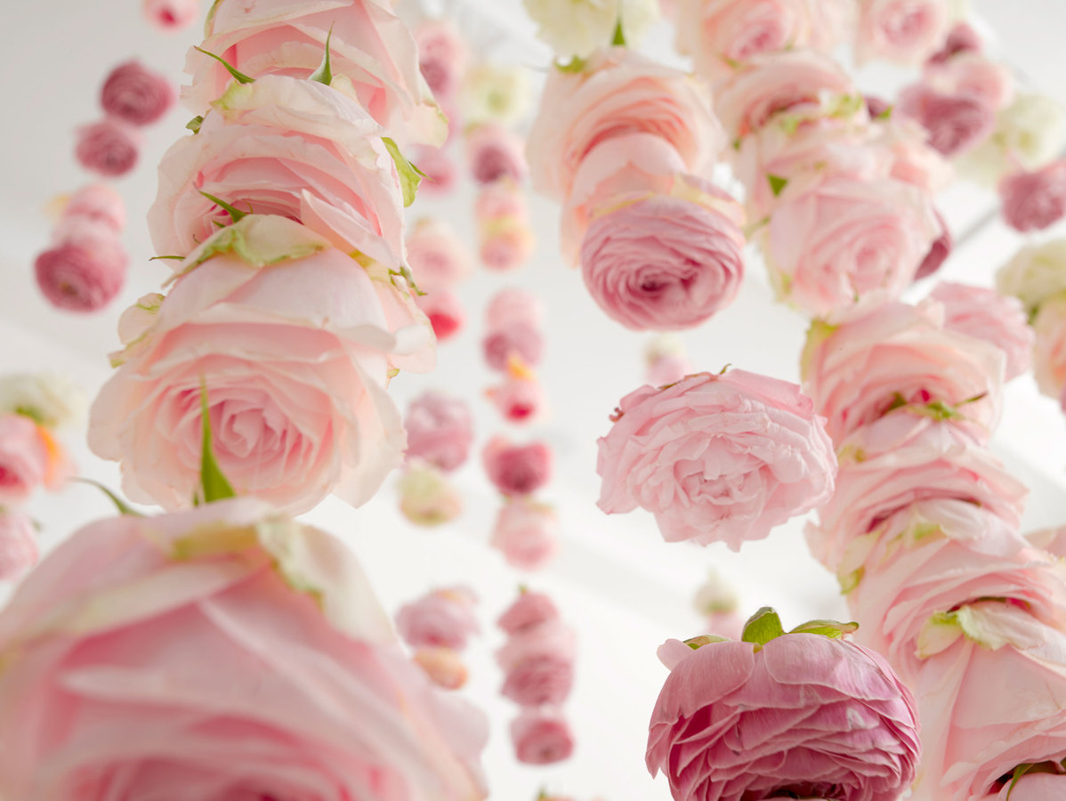 Rose Hanging Garland