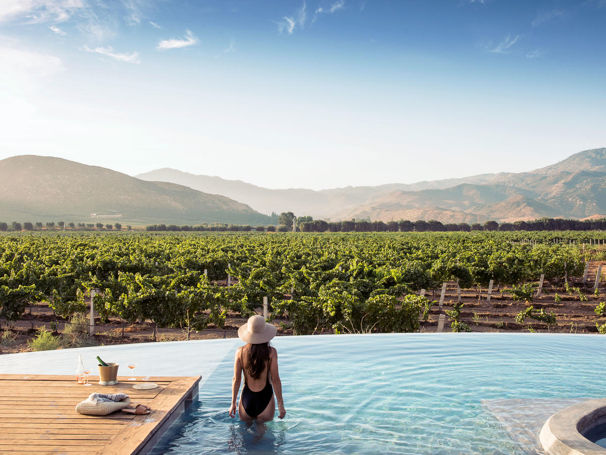 The West's New Hottest Wine Region Is South of the Border