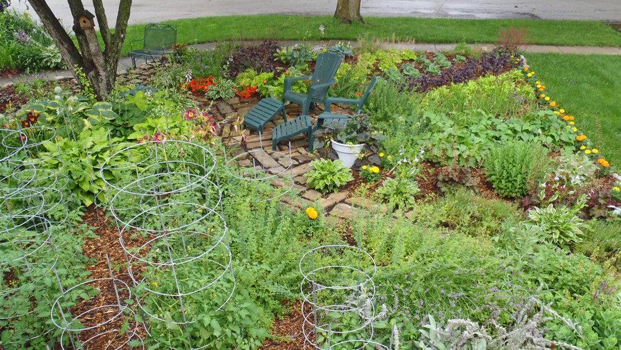 Annual Salad Garden