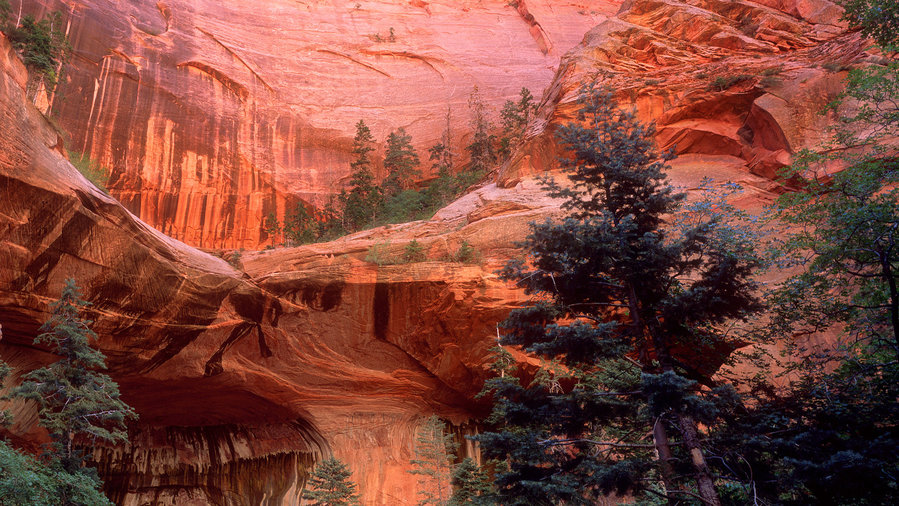 The Double Arches at Zion National Park off Highway 89