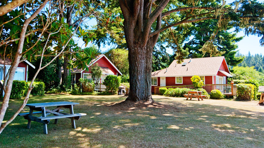 Trinidad California cozy cabins with red exteriors among the trees