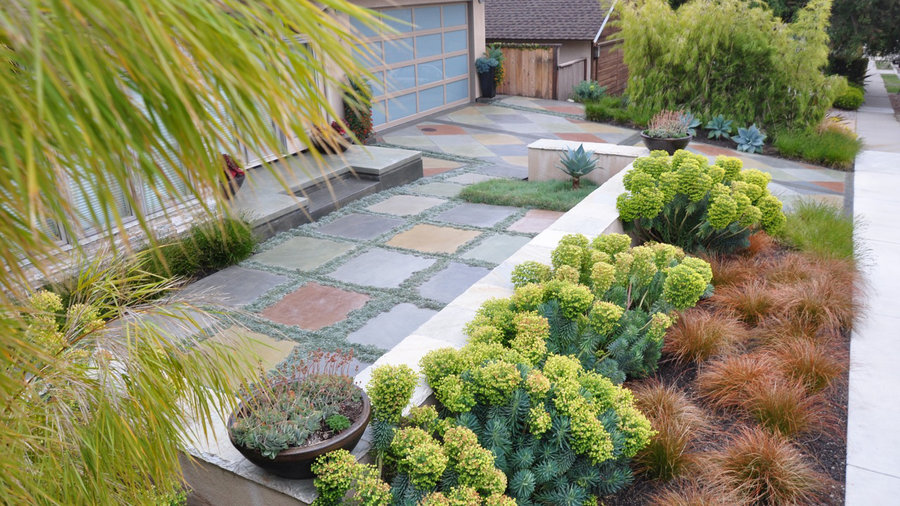 10 questions to ask before hiring a landscape designer for Garden design questions