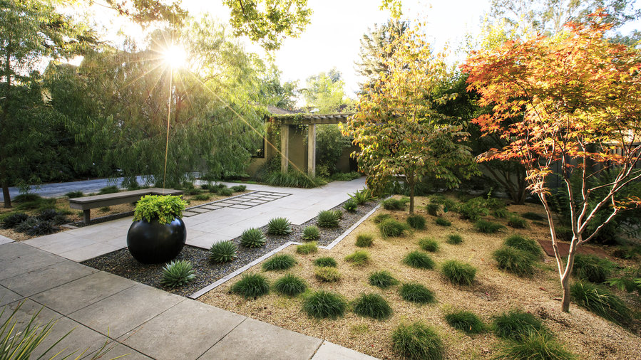 Backyard Design Guide. 21 Inspiring Lawn-Free Yards - Amazing Backyard Ideas - Sunset - Sunset Magazine