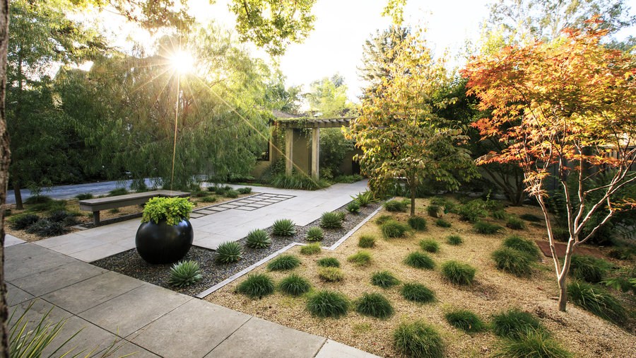 Favorite Front Yard Desgn Ideas Sunset Magazine