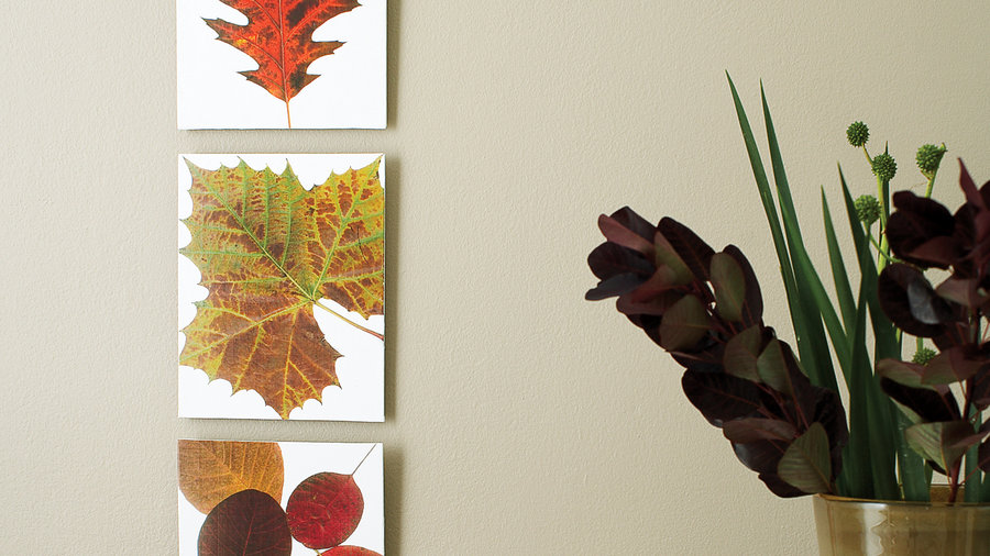 Easy fall decorating: DIY art from autumn leaves