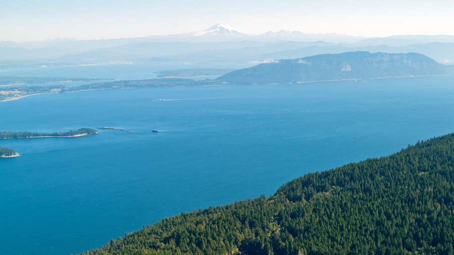 Views of forest and ocean at Moran State Park in Orcas Island