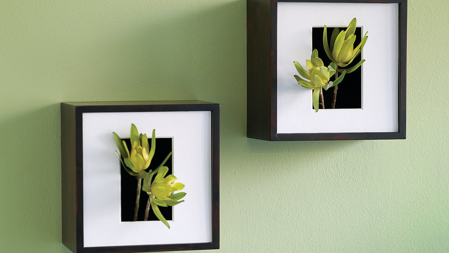 Shadowbox wall vase