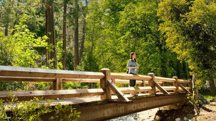 Person standing on wooden bridge on one of the best hike in Yosemite, Vernal Fall