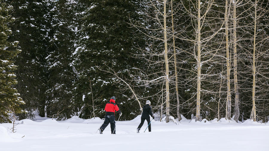Two people cross-country skiing at Winterlake Lodge in Alaska