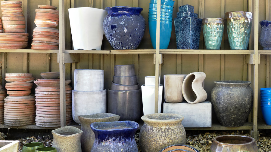5 Water-Saving Tips for Containers