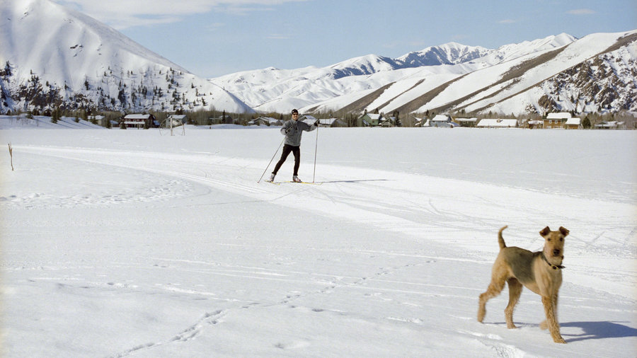 A man nordic skies under blue skies in Hailey, Idaho with a dog