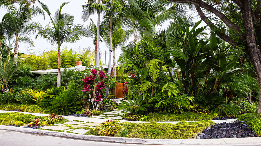 How to Design a Lush Tropical Retreat - Sunset Magazine ... on Tropical Backyard Landscaping Ideas  id=84373