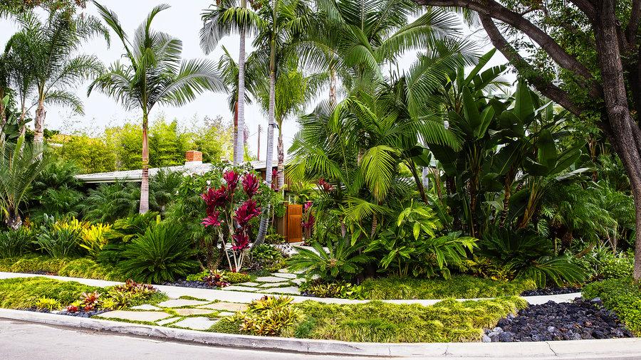 how to design a lush tropical retreat - sunset magazine