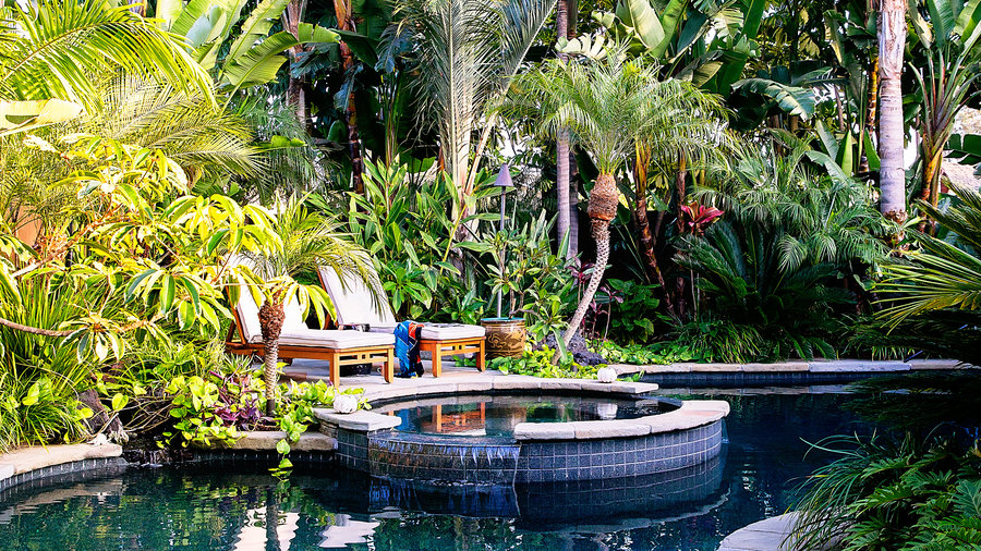 Superieur How To Design A Lush Tropical Retreat