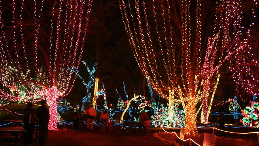 Holiday lights fill the Bakersfield CALM Zoo