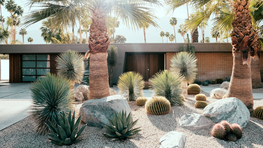 Desert landscape idea