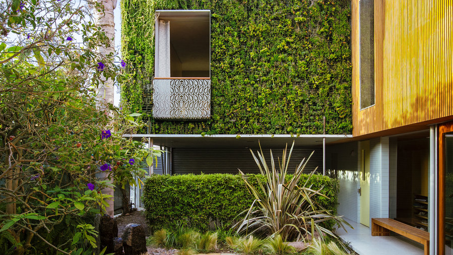 How to Create a Lush Urban Oasis