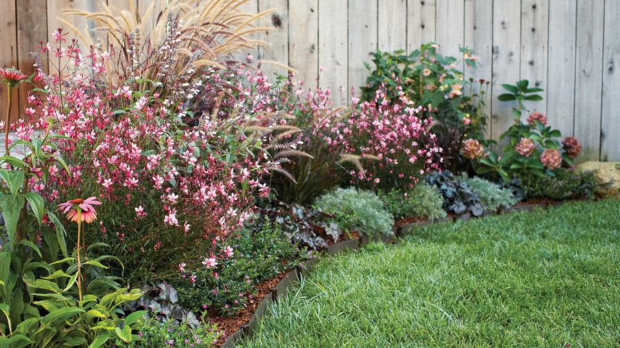 20 garden border designs sunset magazine sunset magazine for Shrubs for garden borders
