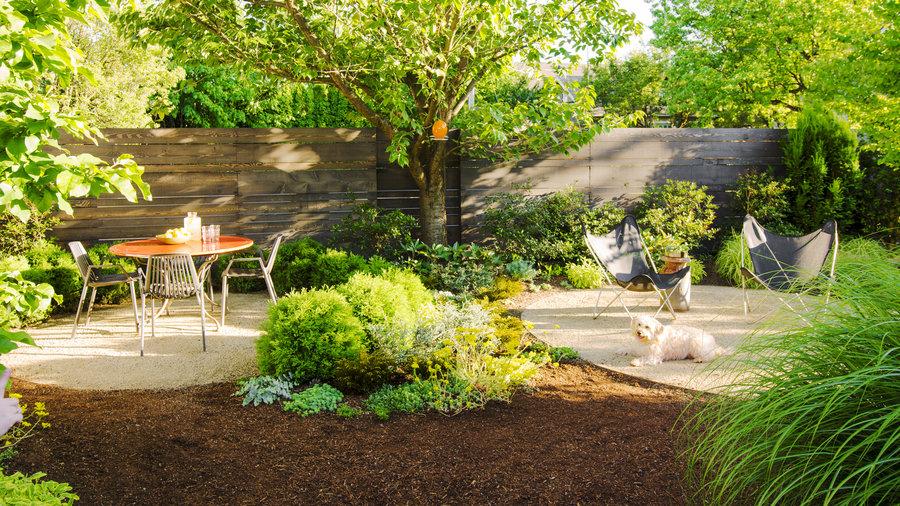 How To Create A Dog Friendly Garden   Sunset Magazine   Sunset Magazine