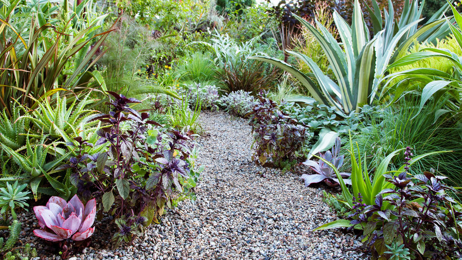 Edible Landscape Ideas - Sunset Magazine