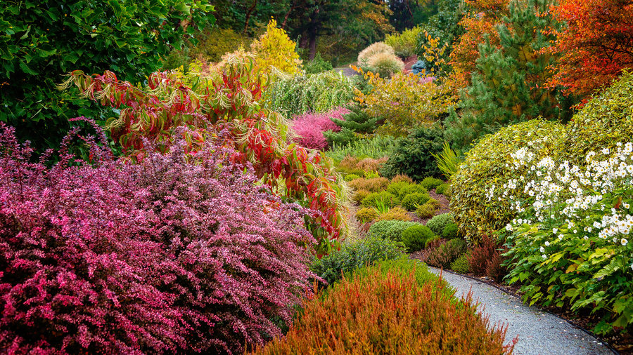 Fall Garden Ideas Part - 31: 6 Lessons For A Stunning Fall Garden
