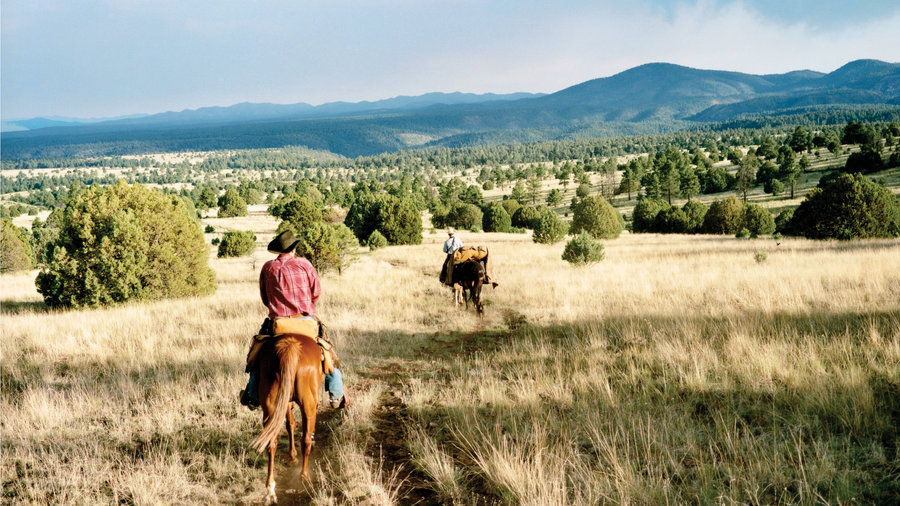 New Mexico's Gila Wilderness, tamed