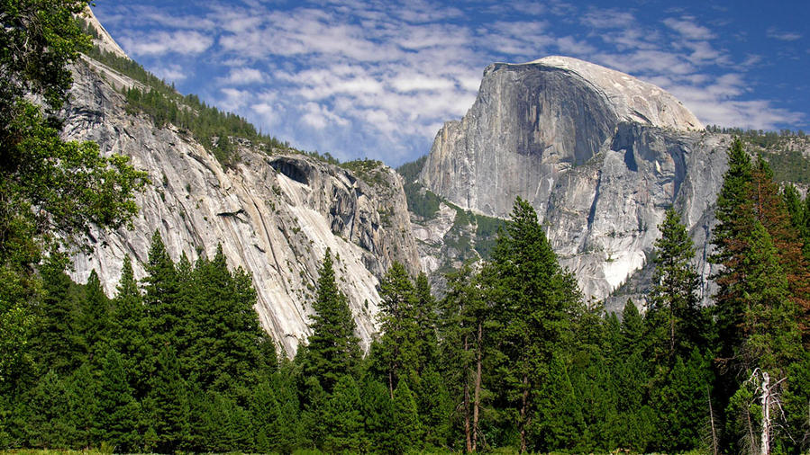 Yosemite Valley with green grass and mountain in the California Sierra Nevada
