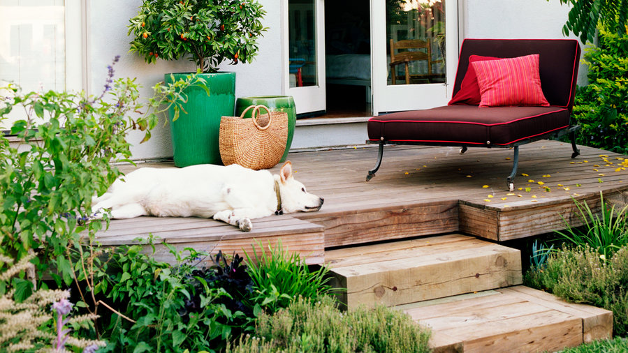 1 House, 5 Great Outdoor Rooms
