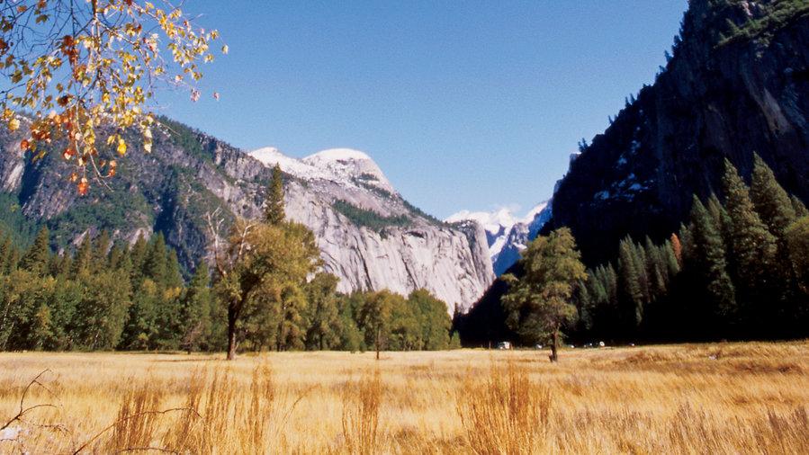 Catch the golden season at Yosemite