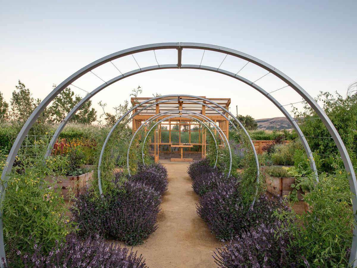 sunset test gardens