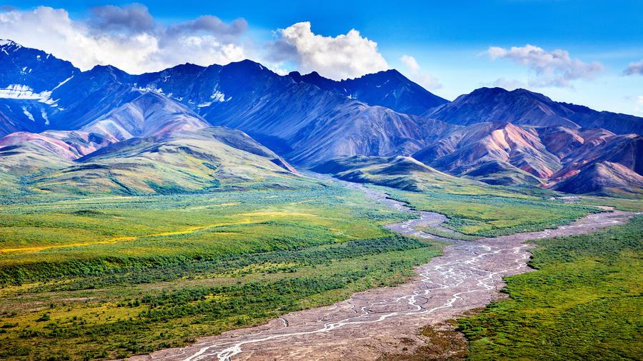Discover Denali National Park & Preserve