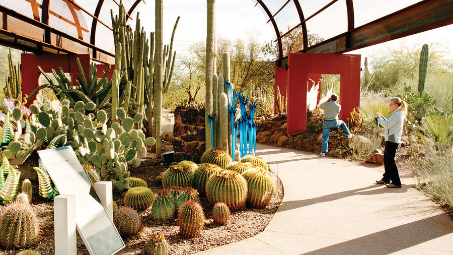 Phoenix's cutting-edge gardens
