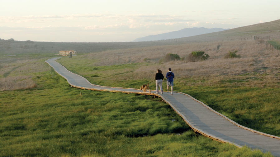 Cambria: Charms of California's Central Coast