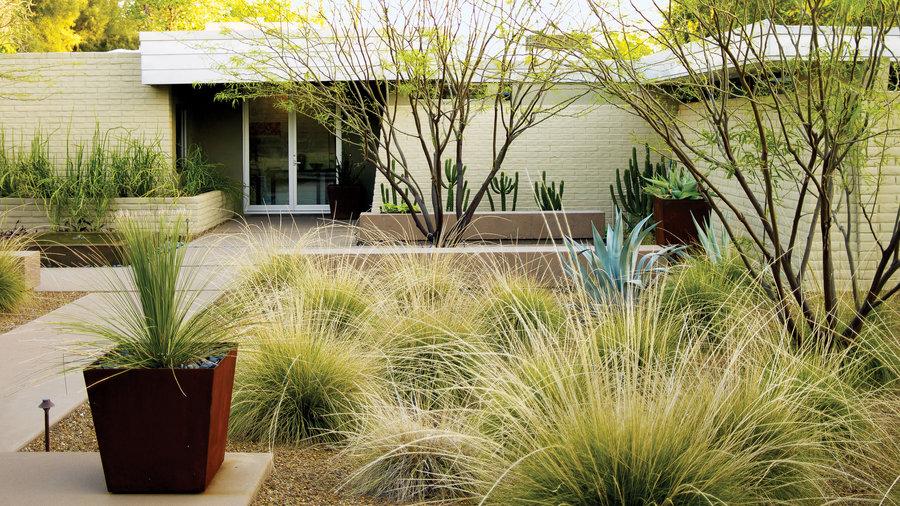 Desert front yard facelift: After