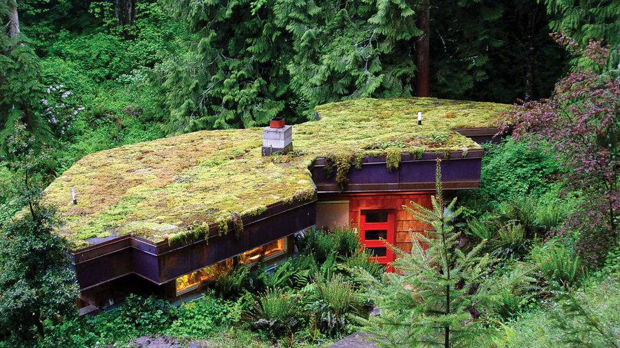 8 Gorgeous Living Roofs Sunset Magazine