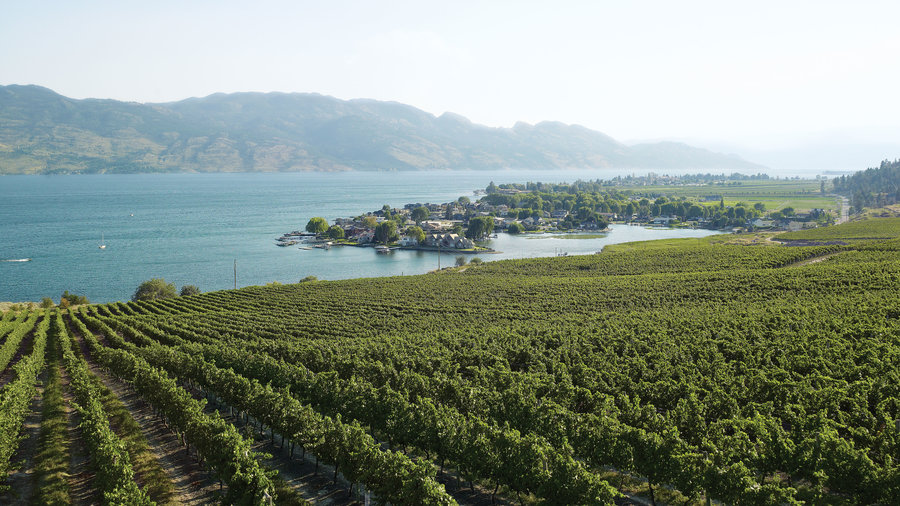 Go wine tasting in British Columbia's Okanagan Valley