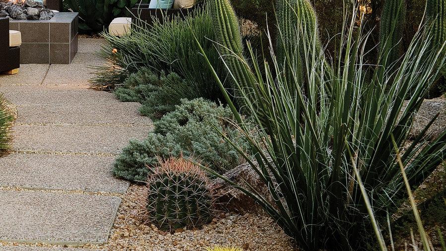 Southwest Backyard Ideas - Sunset Magazine on Southwest Backyard Ideas id=52244
