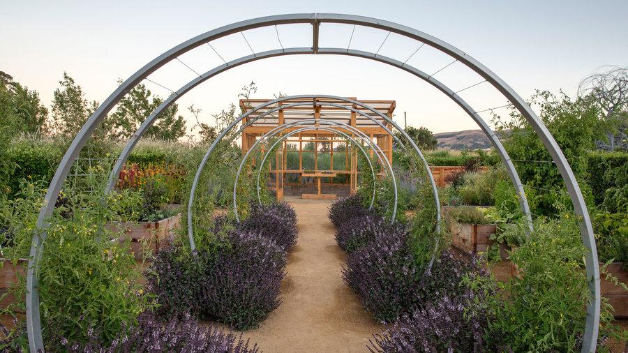 Backyard Farm Design Ideas - Sunset Magazine
