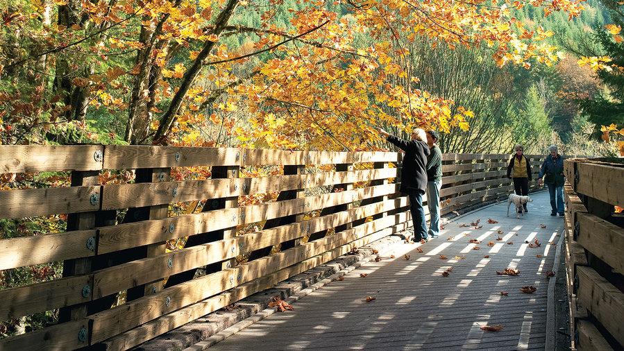 Savor the season in Vernonia, OR